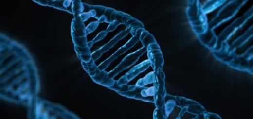 genen