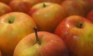 appel-dieet