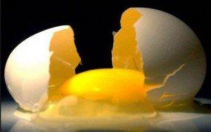Cholesterolrijke voeding